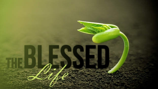 blessed life, the
